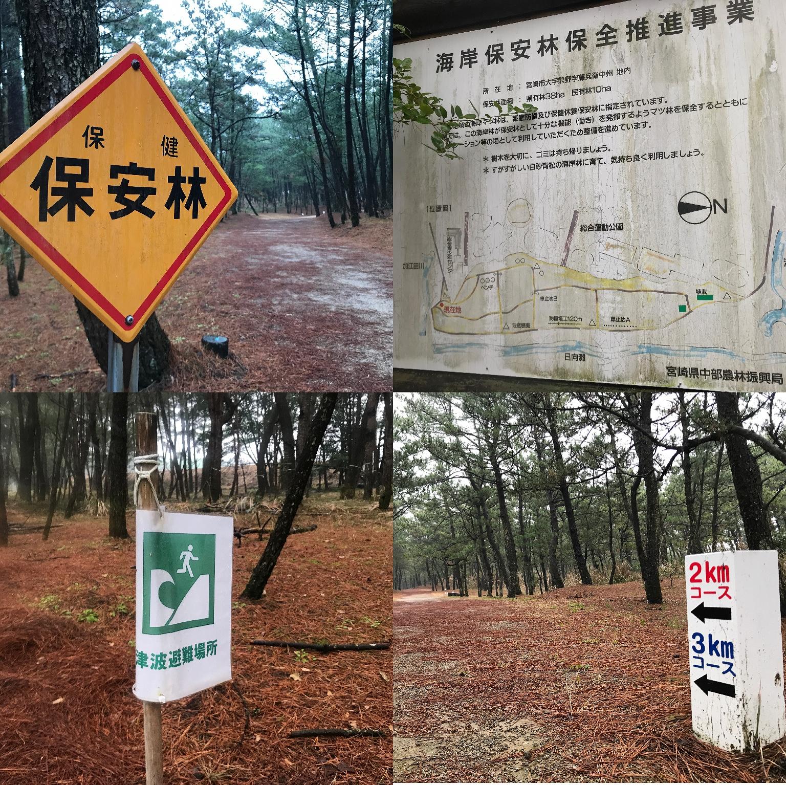 松木樹林除了作為越野跑道,也是防潮害設施,而運動公園內的田徑場、棒球場則成為海嘯避難所,這樣人與大自然融合的運動公園設計,實在是令我大開眼界!